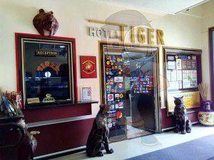 Tiger-Hotel-006